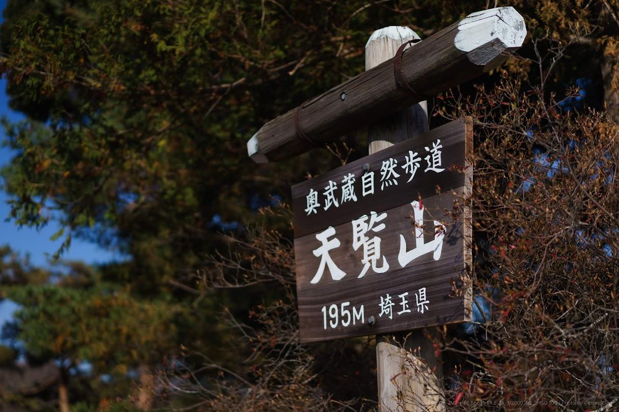 DSC09322.jpg
