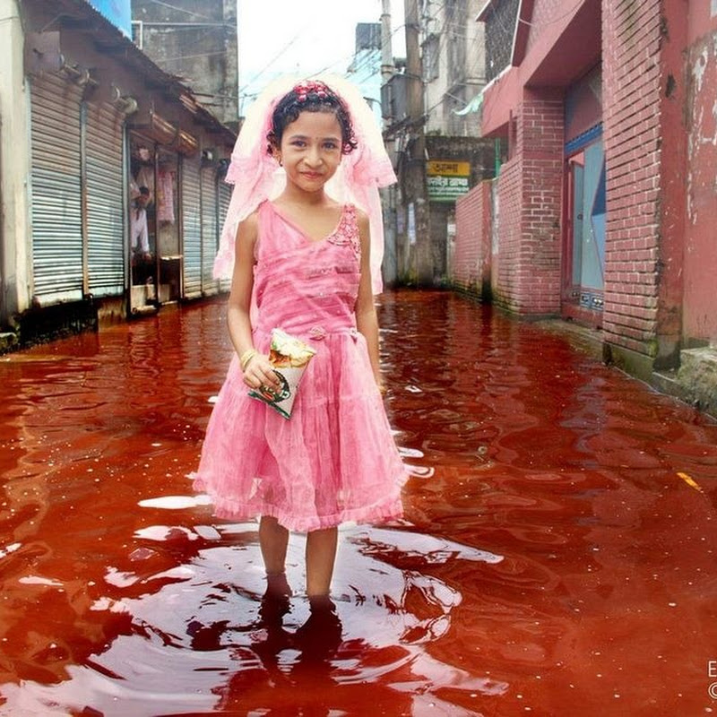 Rivers of Blood: The Aftermath of Eid al-Adha in Dhaka