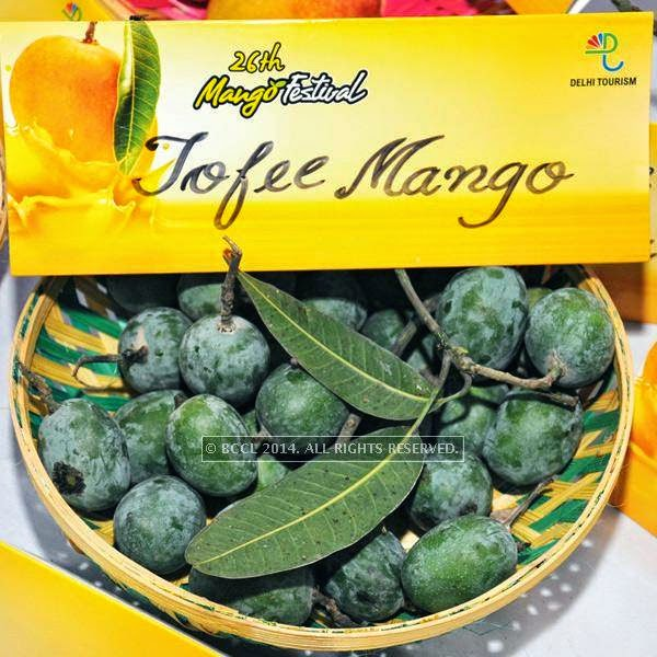 Toffee mango at the 26th Mango Festival, organised by Delhi Tourism at Dilli Haat, Pitampura, Delhi.