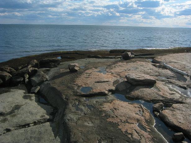 Outer Island Field Trip - o-i230.jpg