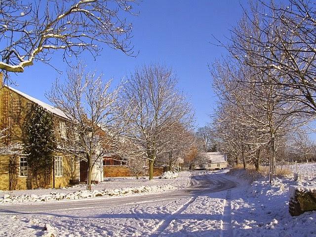 Woodhurst In The Snow - 7796198510233_0_BG.jpg