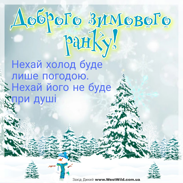 Доброго зимового ранку та гарного дня