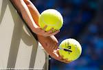 Ambiance - 2016 Australian Open -D3M_6482-2.jpg