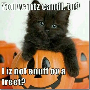 candy cat for halloween