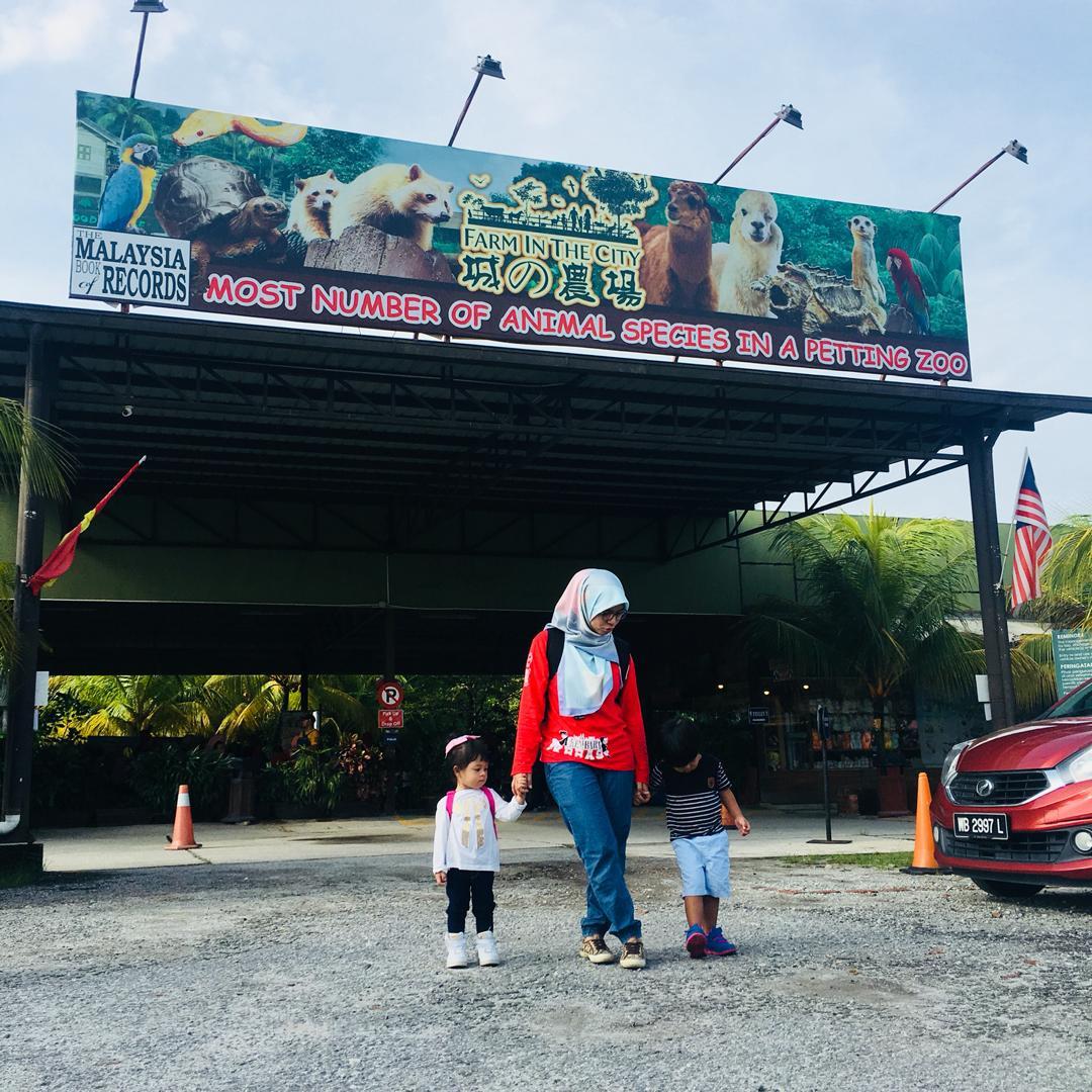 Farm In The City Petting Zoo Yang Beri Pengalaman Menarik Untuk Anak-anak