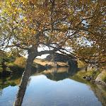 Lagoas da Serpe e Ocelo_29.JPG