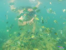 family trip pulau pari 090716 GoPro 20