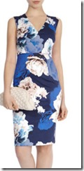 Coast Baltic Print Dress