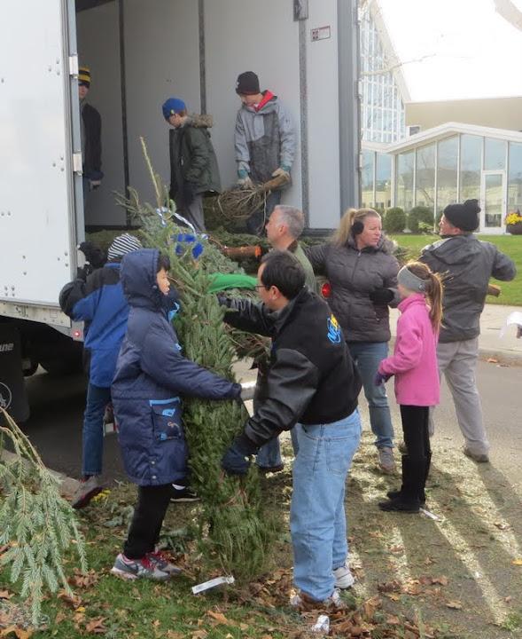 Christmas Tree Lot - IMG_1792.JPG
