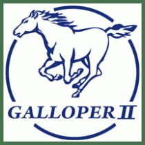 manual de taller galloper