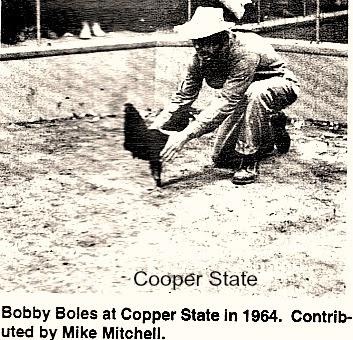 BolesCopperState.jpg