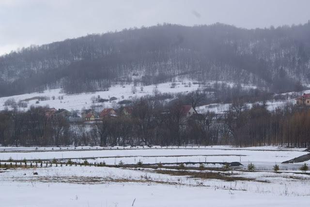 Zajęcia terenowe 29 lutego 2012 - DSC06169_1.JPG