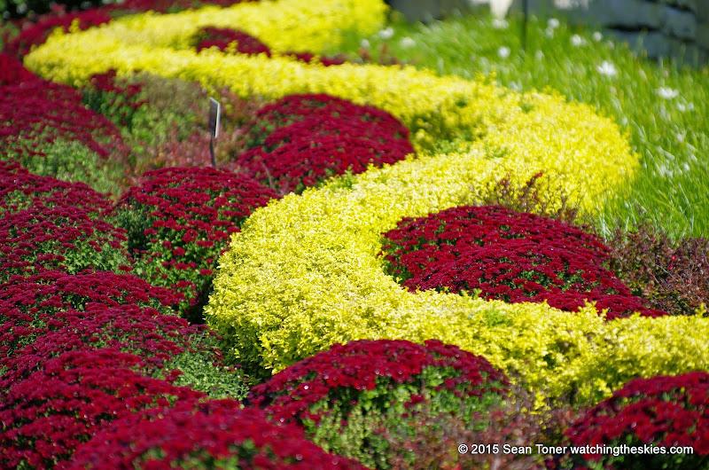 10-26-14 Dallas Arboretum - _IGP4308.JPG