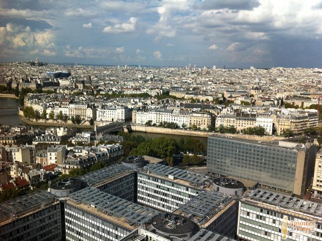 Vistas de Paris Torre Jussieu 3