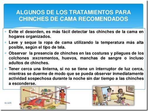 chinche-de-cama-cimex-lectularius-14-638