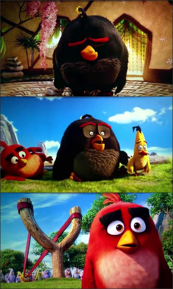 angry birds 2016 full movie free download in hindi worldfree4u