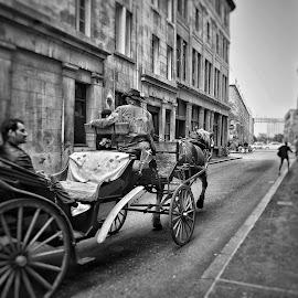 Carriole vieux Montréal  by Lise Bertrand - City,  Street & Park  Street Scenes (  )