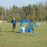 THS Herbstprüfung mit Vereinsmeisterschaft 2015 - DSC03393%2B%2528Gro%25C3%259F%2529.JPG