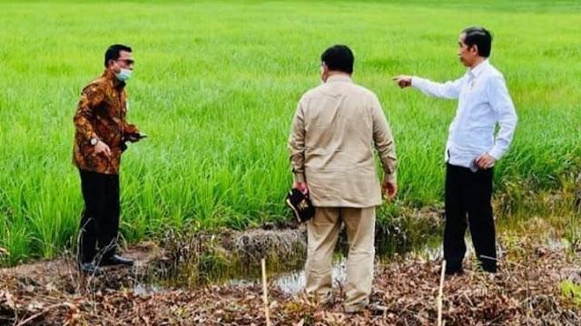 Jokowi Tunjuk Prabowo Jadi Leading Sector Lumbung Pangan Baru.
