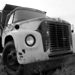 Dump Truck by Shawn Vanlith - Transportation Automobiles ( old trucks, dump truck )