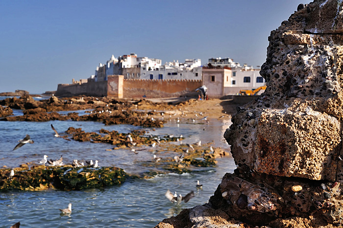 Essaouira08.JPG