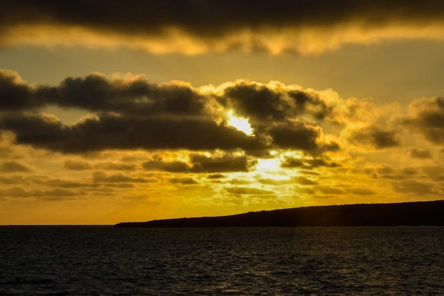 galapagos - Galapagos_FB_2-90.jpg