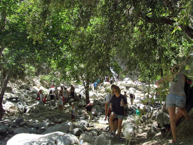 vast crowds near the waterfall