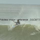 _DSC8772.JPG