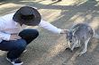 Afc Adam Lyons Pickup Artist In Zoo 6