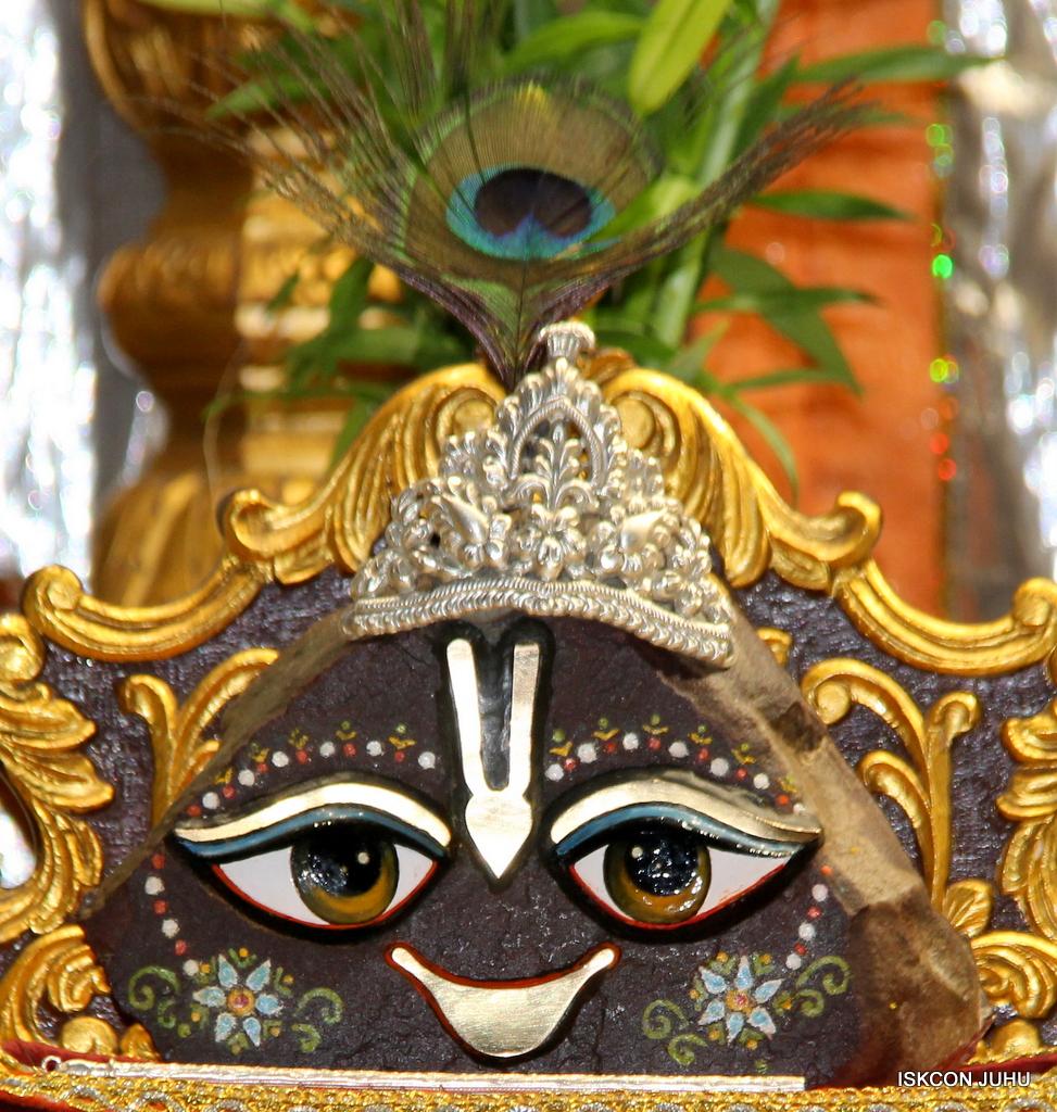 ISKCON Juhu Mangal Deity Darshan on 20th Oct 2016 (23)