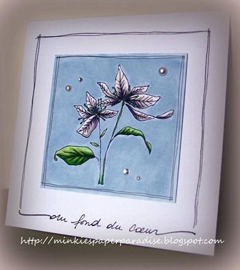 Shelly - flower power