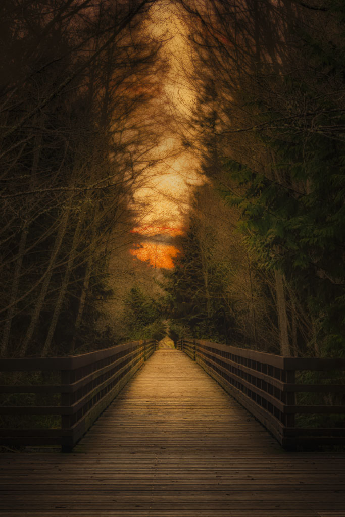 """""""Path to Sunset"""" by Roy Kropp"""