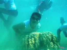 pulau harapan, 23-24 mei 2015 panasonic 27
