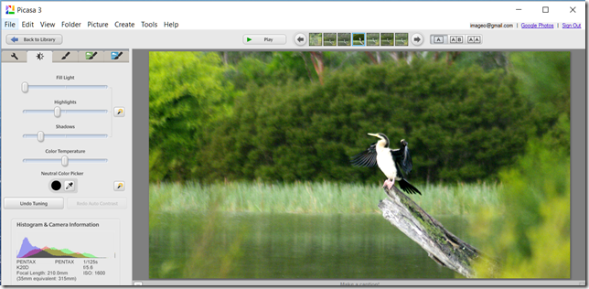 Capture of Picasa's (Tonal) Tuning Screen