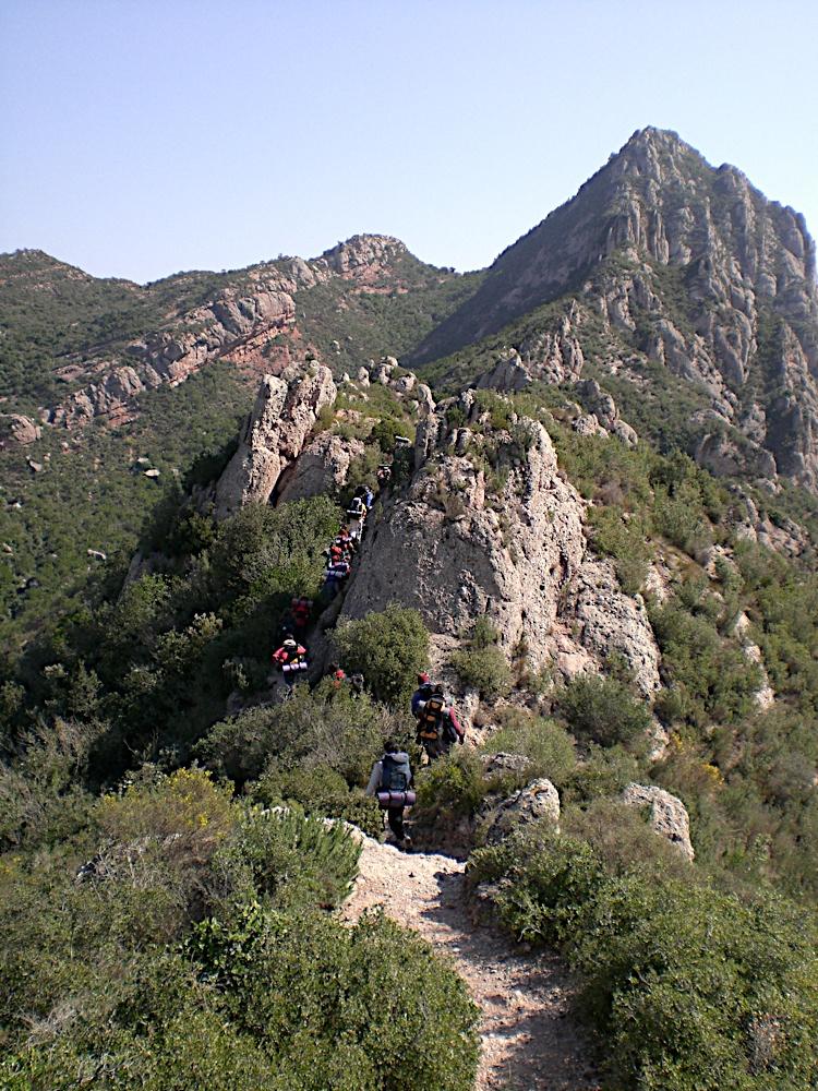 Sortida Sant Salvador de les espasses 2006 - CIMG8377.JPG