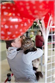 cats-show-24-03-2012-fife-spb-www.coonplanet.ru-024.jpg
