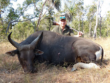Good banteng bull taken by Georg Versch and client, Germany with a double rifle, 9.3x74
