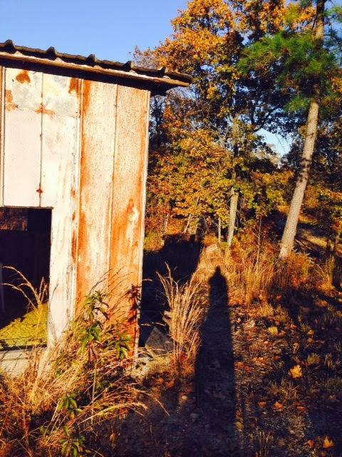 Anderson Creek Hunting Habitat - DeerHabitat002.JPG