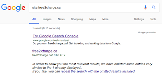My website is showing up with a random URL in a Google search