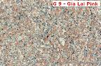 G9 - Gia Lai Pink (Hồng Gia Lai)