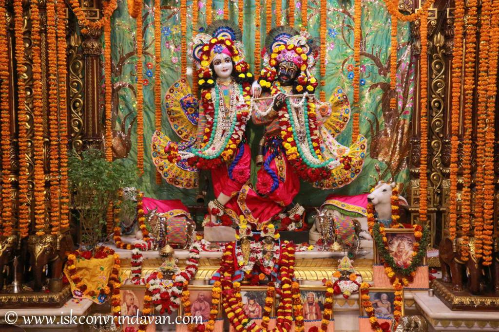 ISKCON Vrindavan Sringar Deity Darshan 20 Dec 2015 (8)