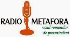 http://www.radiometafora.ro/2014/03/19/festivalul-de-poezie-renata-verejanu-chisinau-cea-de-a-vii-a-editie-a-festivalului-international-de-literatura-bucuresti-filb-omagierea-poetei-nina-cassian-la-muzeul-palazzo-grimani-din-venet/
