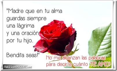 dia de la madre frases en flores