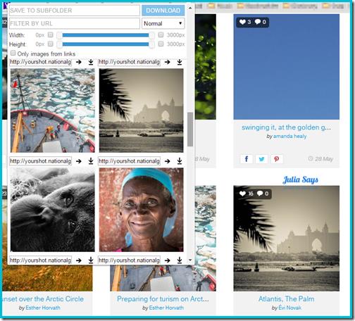 imagedownloader (1)