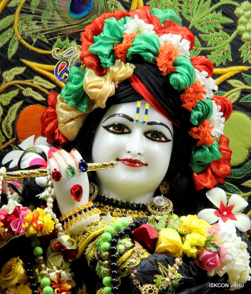 ISKCON Juhu Sringar Deity Darshan on 31st Dec 2016 (7)