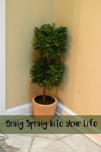 Bring Spring Into Your Life