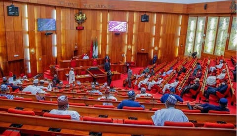 Senate silent as Buhari ignores National Assembly, appoints DG NDE