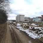 Вырубки ЛЭП в Воронежской Нагорной Дубраве 035.jpg