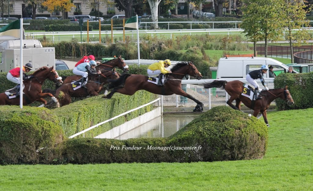 Photos Auteuil 2-11-2014 (48h de l'obstacle) IMG_5279