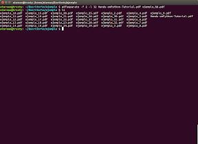 Trabajando con PDF desde el terminal en Ubuntu con poppler-utils - ejemplo 1